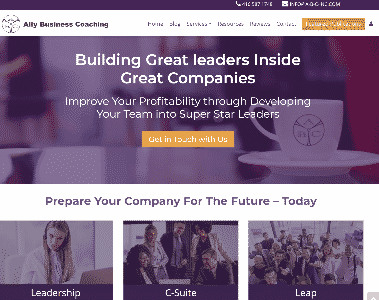 Ally Business Coaching Home page